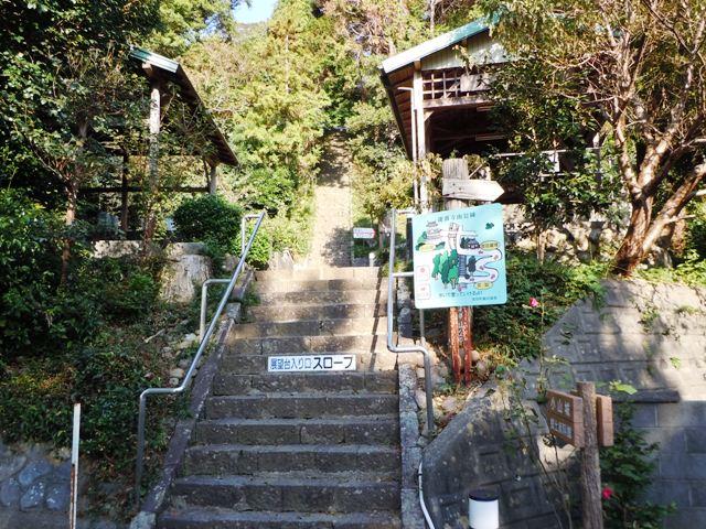 小山城(遠江) (6)