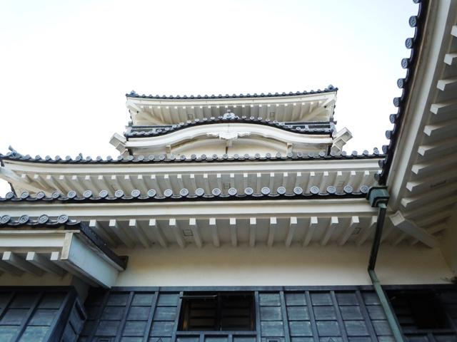 小山城(遠江) (73)