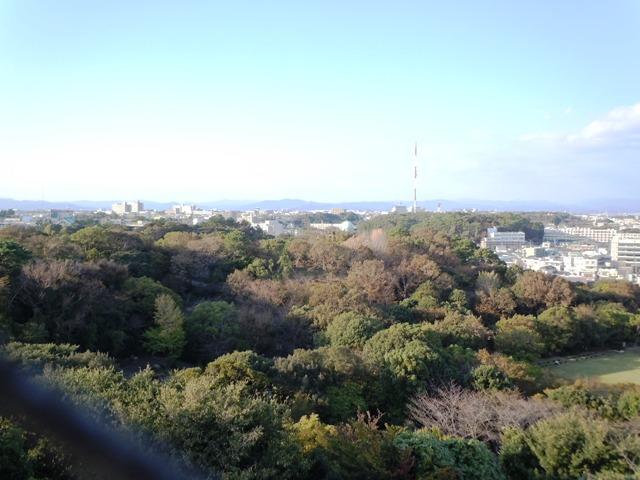 浜松城 (13)