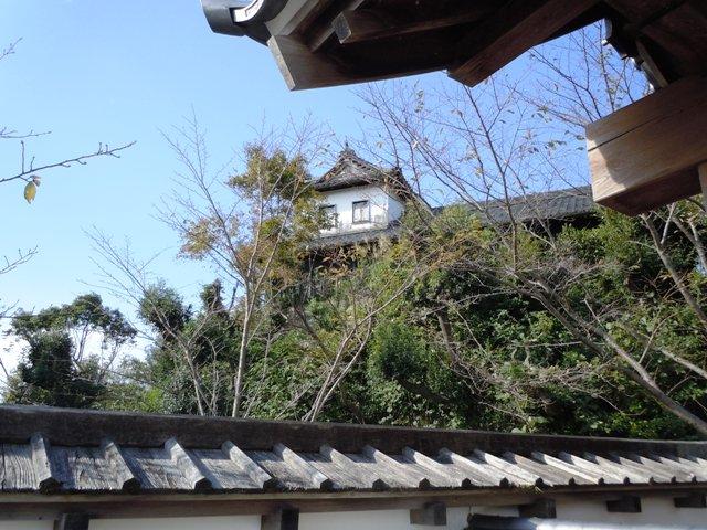 掛川城 (14)