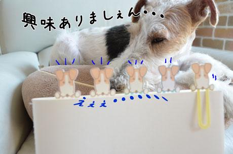 2_20130604165834.jpg
