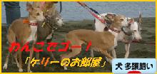 itabana3_201311290112404d9.png