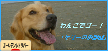 kebana3_20131129011241ffa.png
