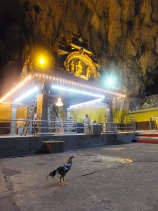 batu caves19