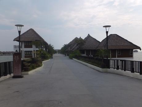 PALM18