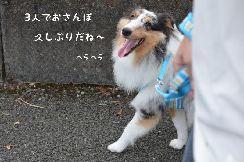 IMG_8090.jpg