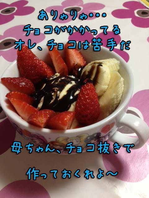 20130401-006.jpg