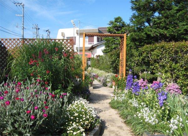 我が家の春の庭