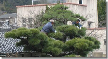 木つくりー2.jpg