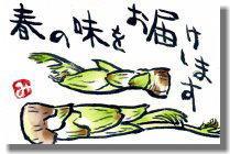 タラの芽ー2.jpg