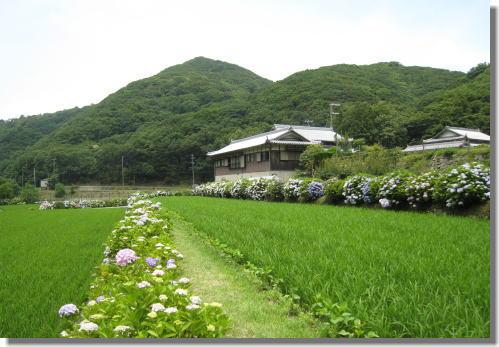 花山水ー3.jpg
