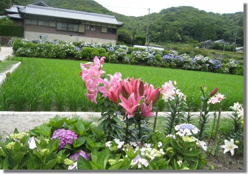 花山水ー5.jpg