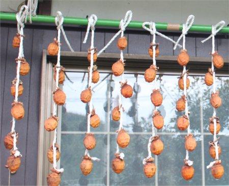 干柿ー3.jpg