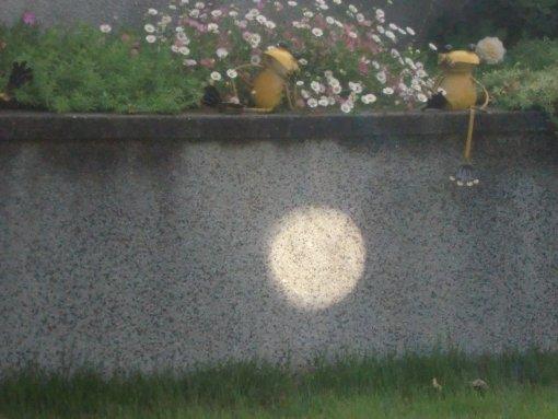 日食ー1.jpg