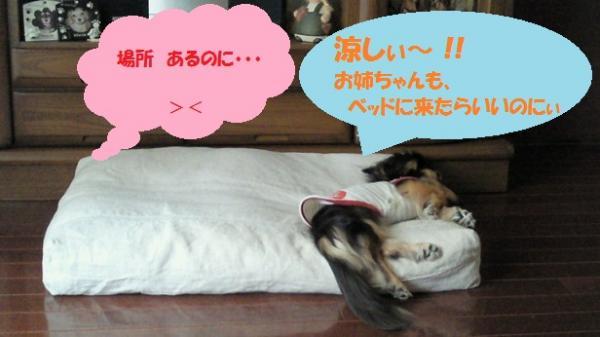 ゆめ ベッド①