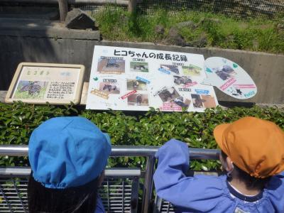 遠足2013④