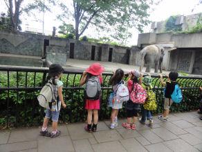 DSC08103 zoo
