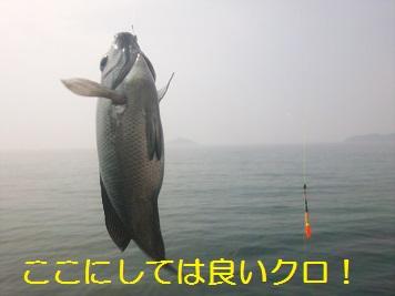 20130526_福吉3
