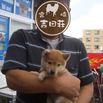 20130528fuzuki2.jpg