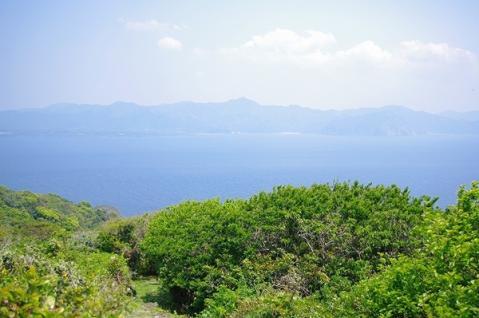 嵯峨の島23
