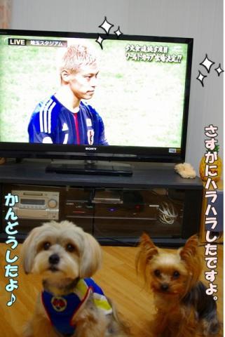 サッカー ワールドカップ②