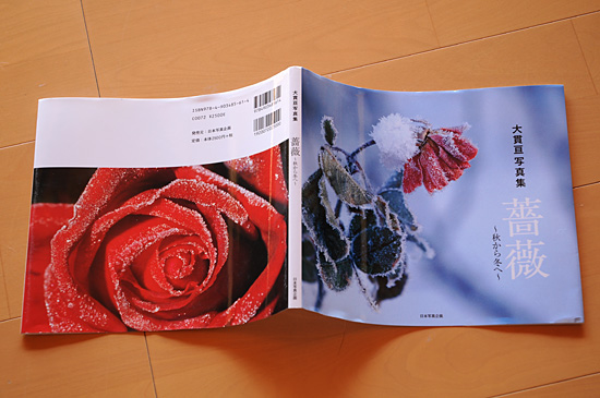 DSC_0007-s_20140116200717dbc.jpg