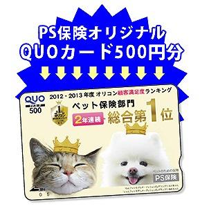 QUOカード5