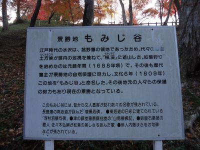 もみじ谷1