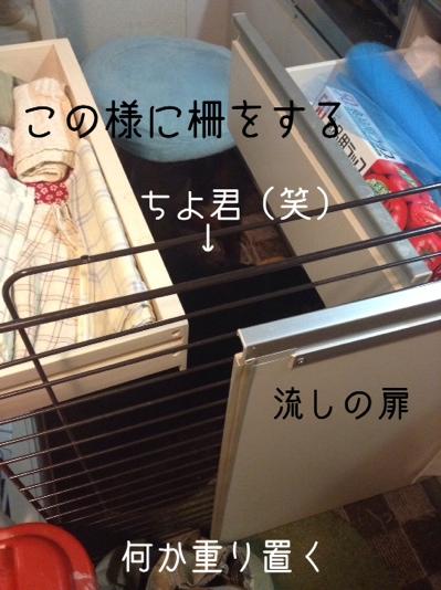 fc2blog_201401141235367c0.jpg