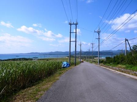 細崎へ向かう道路