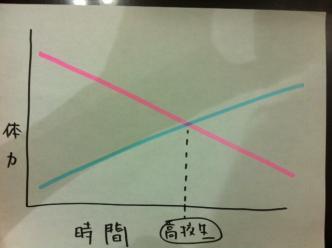 体力グラフ