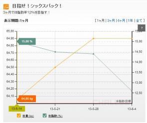 20130604グラフ