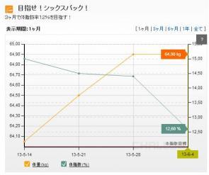 グラフ 201306042
