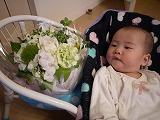 130530_お花とななちゃん (3)