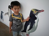 130616_水族館ペンギン (4)