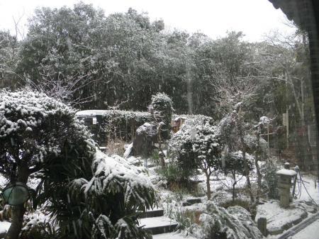 P2140217_convert_20140214092421雪の庭