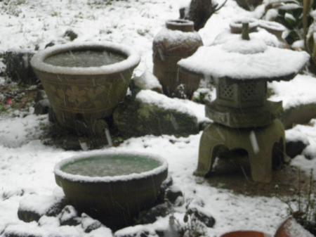 P2140218_convert_20140214092532雪の庭2