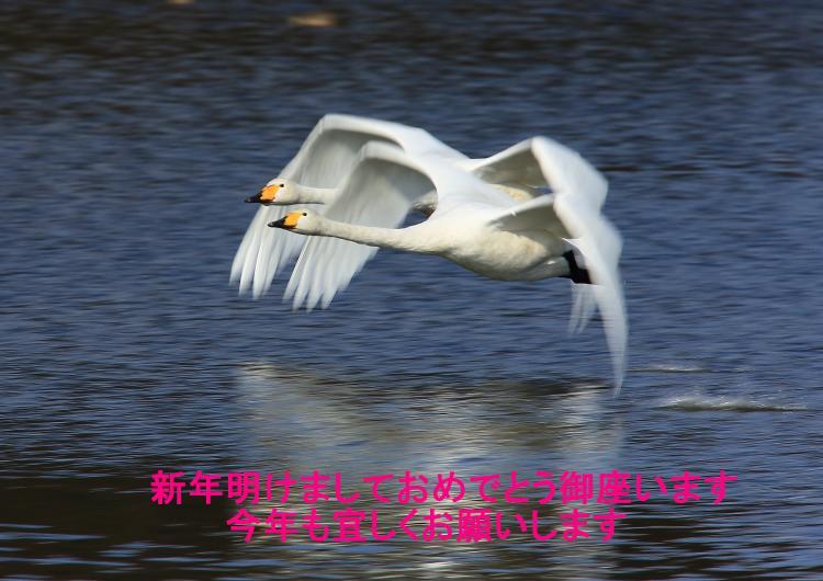 13HY7732_convert_20131231164755.jpg