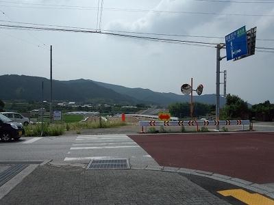 FJ310168.jpg