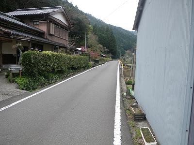 IMGP6532.jpg