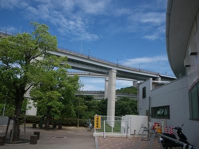 IMGP6770.jpg