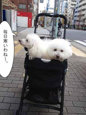 street20131223.jpg