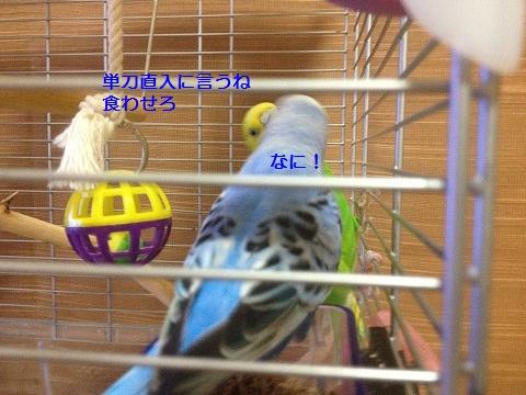 s-IMG_3347.jpg
