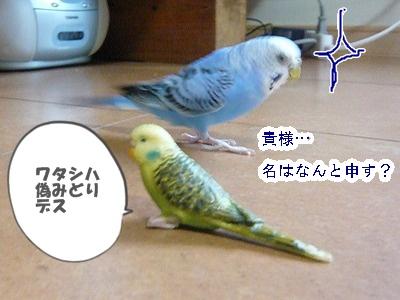 s-P1170619.jpg