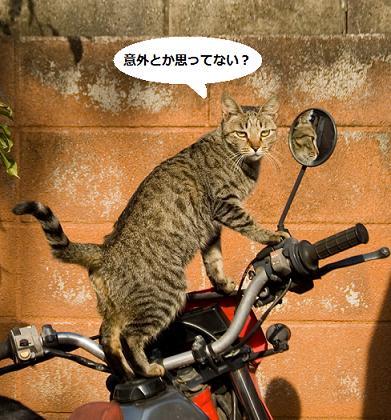 hiroji_003.jpg