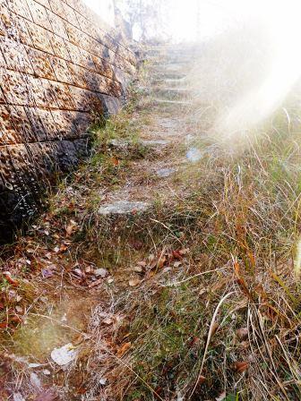 墓掃除10(2013-12-28)