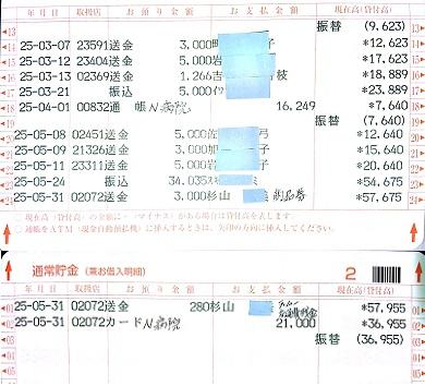 2013.5ミニピンレスキュー収支報告