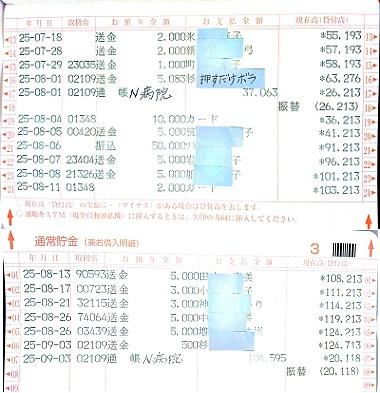 2013.8ミニピンレスキュー収支報告