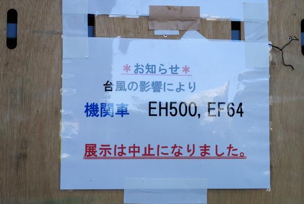 DSC_0873_668.jpg
