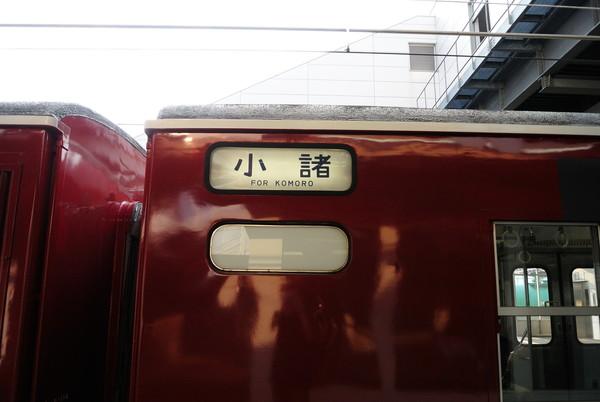 DSC_8954_586.jpg